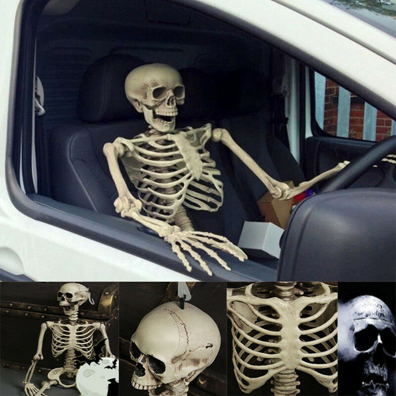 Halloween 170cm Giant Life Size Poseable Skeleton Perfect ...