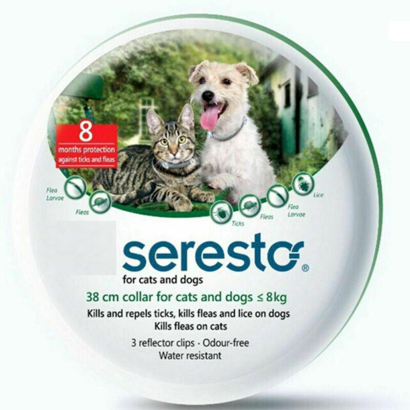 Seresto-For-Dogs-Over-8kg-Collar-pesticide-medio-grandi-Antiparassitario miniatura 12
